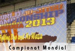 Campinat Mondial Ju-Jitsu 2013
