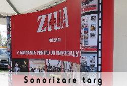 Ziua Cargo 2013